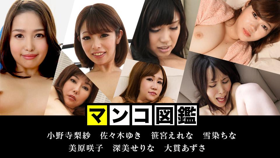 マンコ図鑑 〜これがカリビの醍醐味だ!2018蔵出しマンコ〜