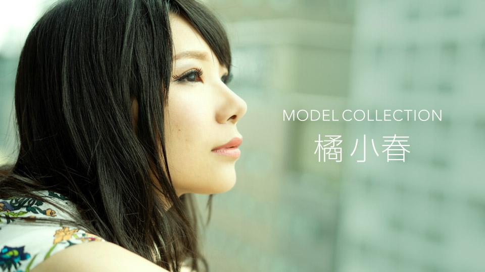 モデルコレクション 橘小春