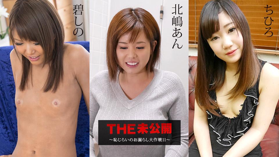 THE 未公開 〜恥じらいのお漏らし大作戦11〜